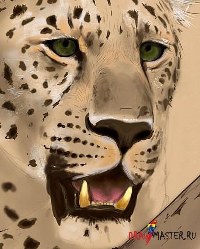 Рисуем леопарда - небольшая имитация пастели