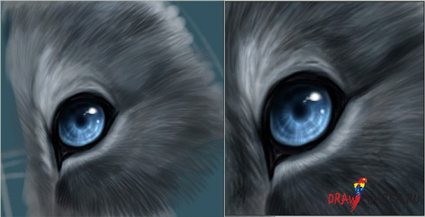 Рисуем реалистичный глаз животного